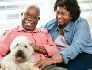 Seniors With Pets Can Boost their health In Home Care Agency
